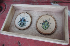Green-Stink-Bugs_Nymphs_acryl on wood
